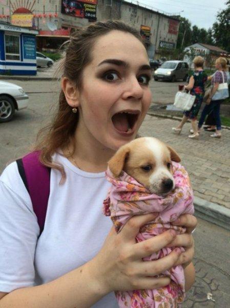 Пользователи сети рассказали о хабаровских живодерках, забиравших животных из приютов