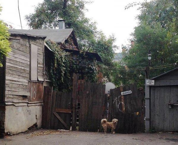 Реальные фотографии современных российских трущоб