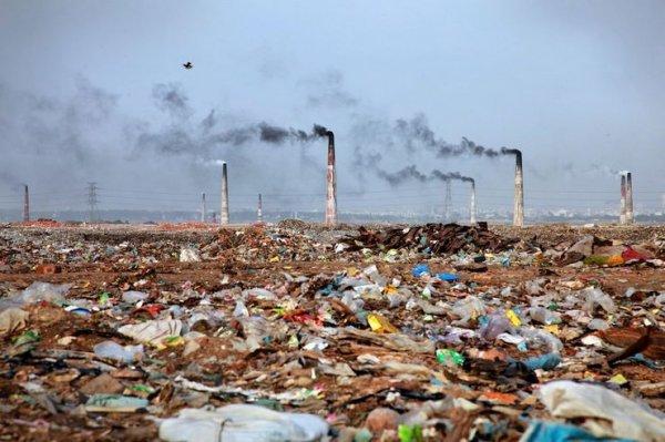 31 фото о том, почему планета так сильно устала от людей