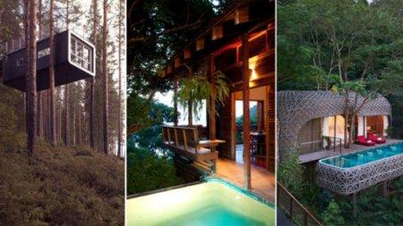 «Затерянный мир» или шесть самых причудливых отелей на деревьях