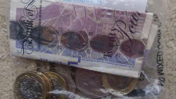 Британский кот-клептоман принес домой украденные у соседей деньги