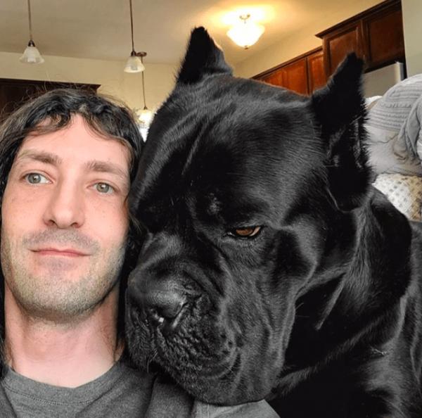Внушительные фото-сравнения людей и животных