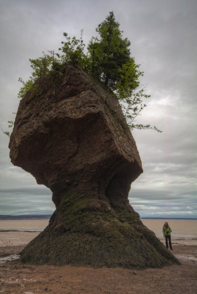 Природное чудо — скалы Хоупвелл в заливе Фанди